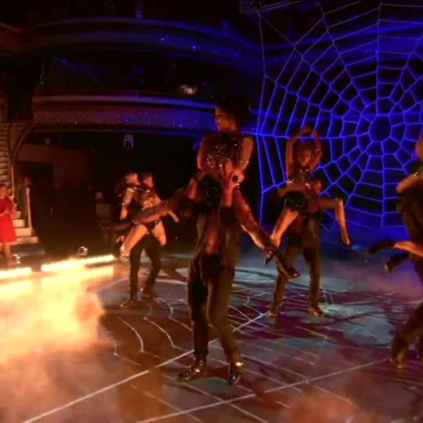 dwts-spider-web-net (6)