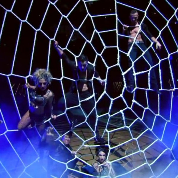 dwts-spider-web-net (9)