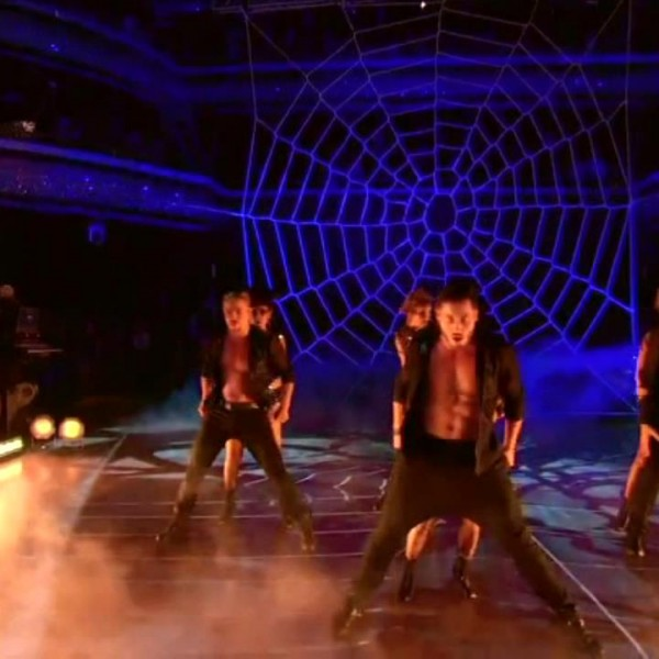 dwts-spider-web-net (1)