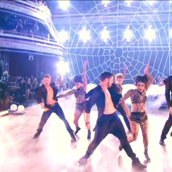 dwts-spider-web-net (2)