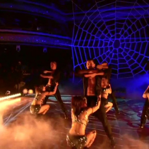 dwts-spider-web-net (3)