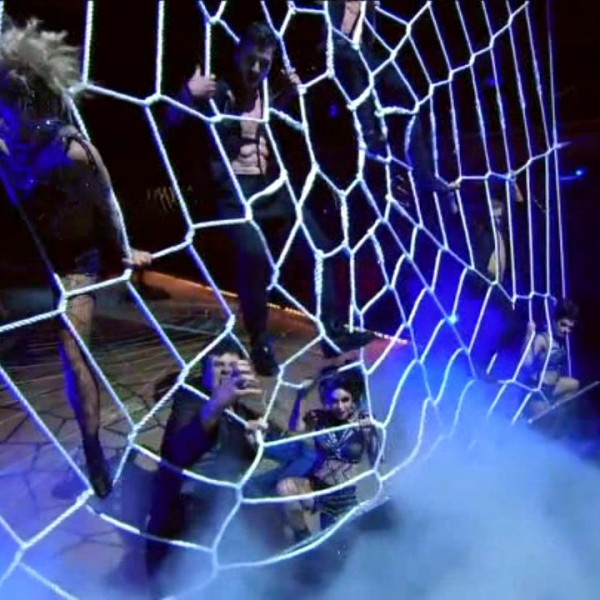 dwts-spider-web-net (7)