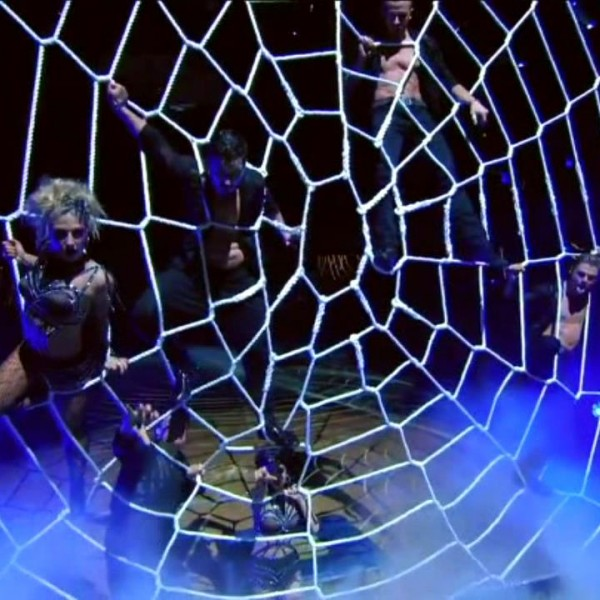 dwts-spider-web-net (8)